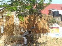 4-ஆம் கட்ட மரம் பராமரிப்புப் பணி துவக்கம் – காசிமியா, ஜமாலியா இளைஞர் அணியினர்